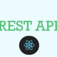 Using a REST API in react - DEV Community