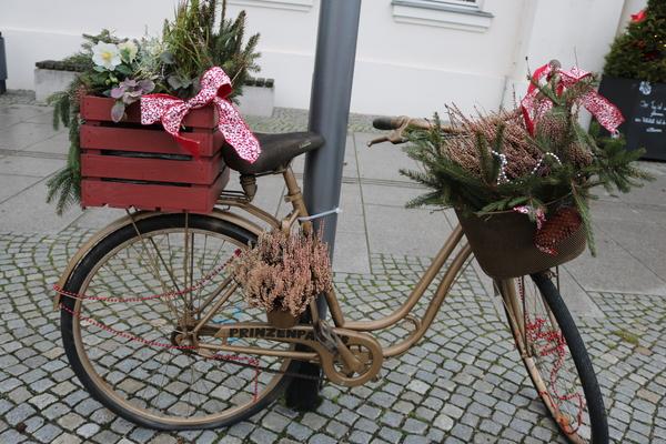 Das Rad steht am Alexandrinenplatz in Bad Doberan (Foto: Anja Levien)