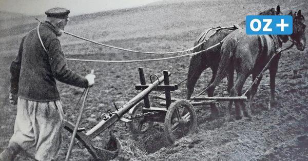 Pommersche Bauern beklagten Benachteiligung in Preußen