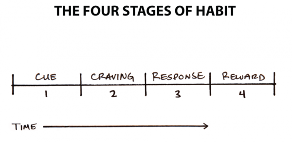 The Four Stages of Habit - James Clear