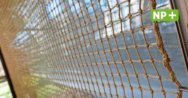 Stadionbad: Netze vor den Fenstern müssen noch länger bleiben als gedacht