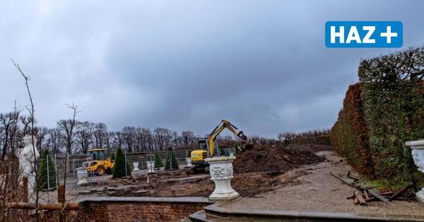 Großer Garten Herrenhausen: Brauner Buchsbaum und Bauarbeiten am Gartentheater
