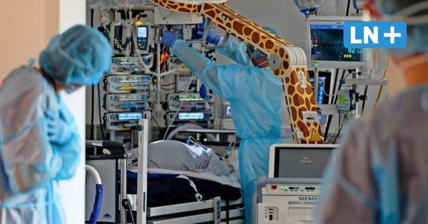 Warum liegen im Herzogtum Lauenburg so viele Corona-Patienten auf den Intensivstationen?