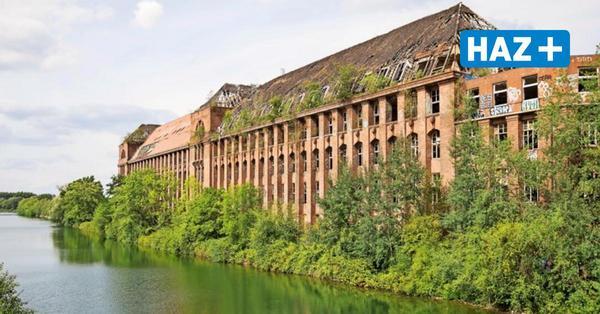 Könnte das Stadtarchiv doch in die Conti-Ruinen der Wasserstadt ziehen?