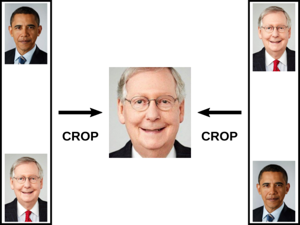 Both versions of the image get cropped by Twitter to McConnell