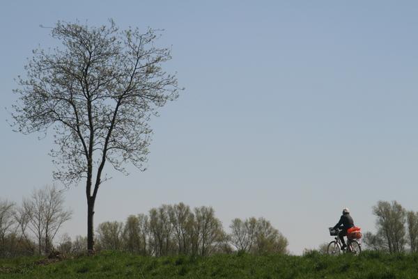 Der Sundern ist Ausflugsziel für Radler und Spaziergänger (Foto: Andreas Zimmer)
