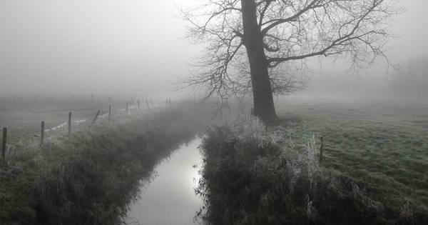 Le Westhoek dans le brouillard - De Westhoek in de mist