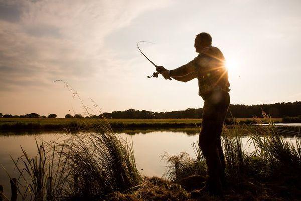 Der große Kolpiner See ist ein Paradies für Angler. Foto: Florian Läufer/Tourismus Seenland Oder-Spree