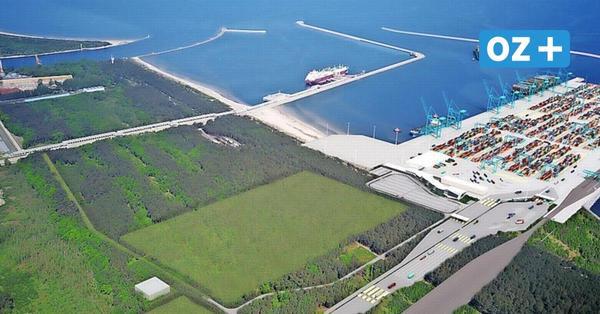 Ausschreibung für Containerhafen-Bau in Swinemünde: Das sind die Interessenten