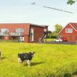 Bezwaar twintig nieuwbouwwoningen aan De Kolk ''ongegrond''