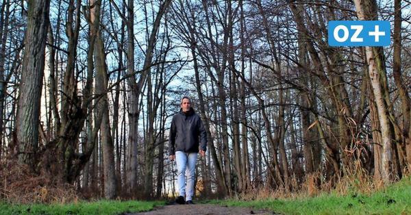 Durchatmen beim Naturdenkmal in Boltenhagens Urwald