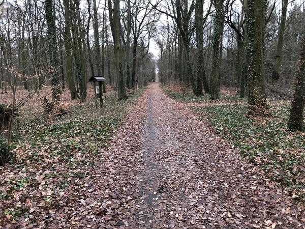 Ab in den Tiergarten: Dort ist es auch im Winter idyllisch. Foto: Frank Pawlowski