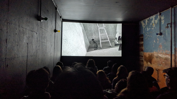 Long Live the Microcinema | The Current | The Criterion Collection