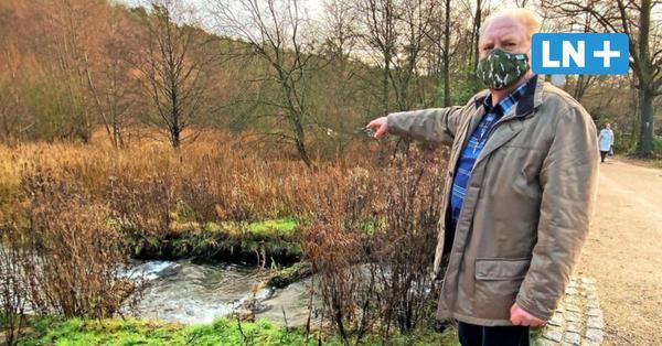 Bürger suchen Grund für sinkende Gewässerqualität in Mölln