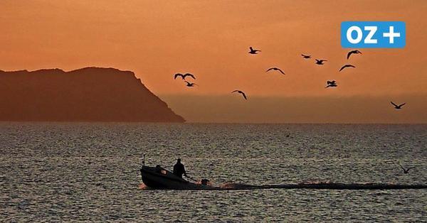 Bodden vor Hiddensee: Angler und Fischer streiten um Hecht nach Video