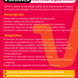 Chief Digital Officer - Vivefuturo