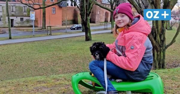 Schlittenfahren: Das sind die besten Rodelpisten in und um Stralsund