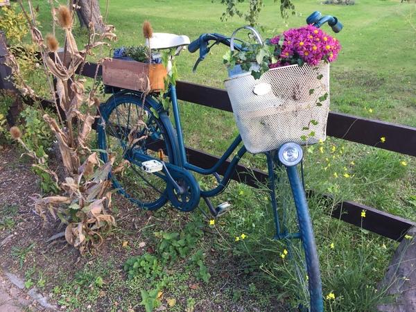 Blumenfahrrad aus Bad Doberen (Foto: Anja Levien)