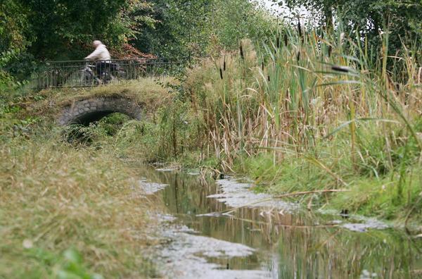 Die Fösse plätschert in Davenstedt in einem Grünzug dahin. (Foto: Christian Behrens)