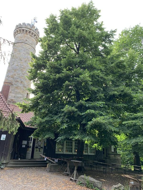 Der Süntelturm bietet einen famosen Rundblick - wenn er nicht gerade wegen des leidigen Krankheitserregers geschlossen ist. (Foto: Petra Rückerl)