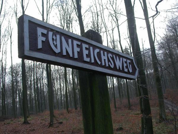 Der Fünfeichsweg trägt seinen Namen nach einem alten Waldversteck. (Foto: Friedhelm Lüdersen)