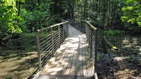 Eine Moorbrücke im Sutschketal. Foto: Günther Mehlitz