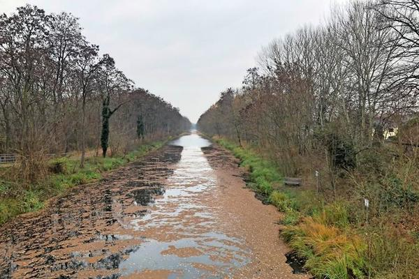 Zahlreiche Kilometer erstreckt sich der Oranienburger Kanal durch die Landschaft.