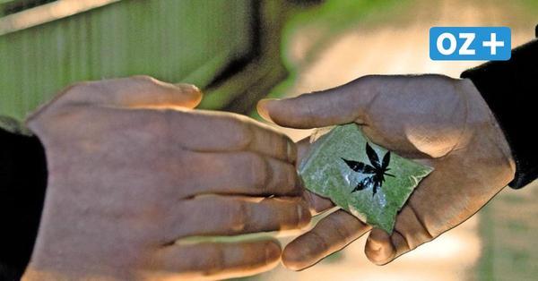 Diskussion um Drogenszene in Grevesmühlen: Braucht die Stadt Streetworker?