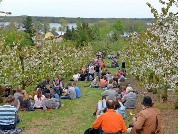 Das Baumblütenfest fand zuletzt 2019 statt - neuen Obstwein gibt es trotzdem. Foto: Bernd Gartenschläger
