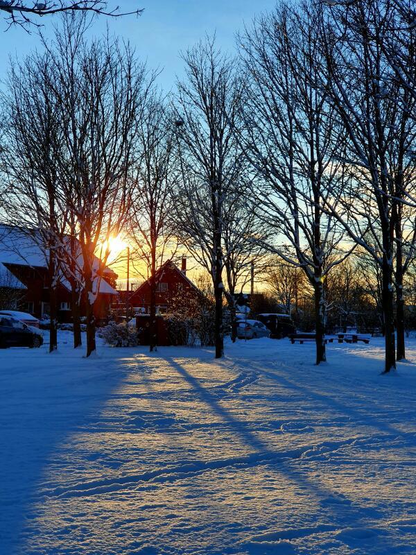 Schnee in Dummerstorf (Foto: Andreas Erdt)