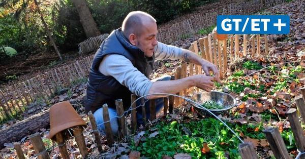Andree Bock bewirtschaftet seinen Garten nach den Prinzipien der Permakultur