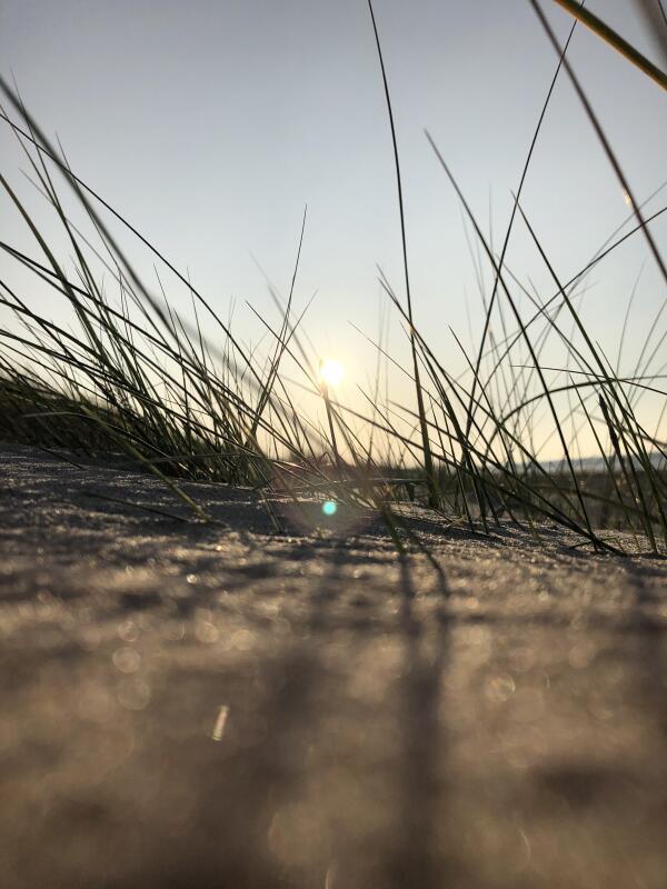 Tag am Meer (Foto: Klara Margarethe Kummer)