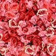 How 1-800-Flowers.com became one of the biggest, clunkiest names in Valentine's Day gifts - Vox