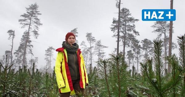 Neustadt: Försterin Natalie Leichnitz arbeitet am Wald der Zukunft