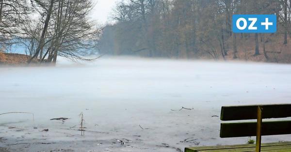 Sanierung des Pulower Sees bei Lassan: Vorhaben droht zu scheitern