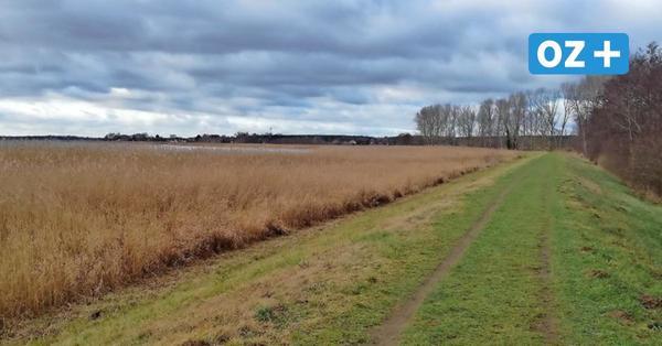 Usedom: Diese Alternative könnte Erlebnisweg am Achterwasser ersetzen