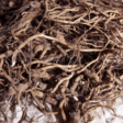 Impressive Health Benefits of Kava Root