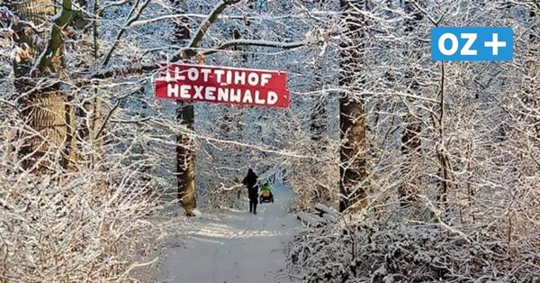 Coole Tipps für Winterferien-Kids in Mecklenburg-Vorpommern