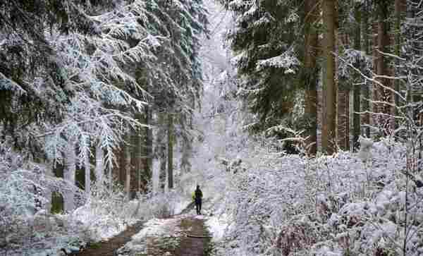 Auch der Kleine Deister ist derzeit eine Winterlandschaft. (Foto: Frank Hermann)