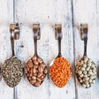 15 Common Types of Beans