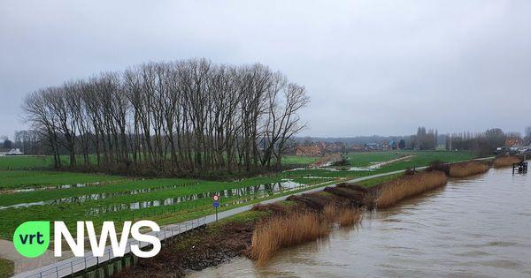 """Le niveau des nappes phréatiques s'est nettement amélioré grâce aux fortes précipitations, """"mais nous n'en sommes pas encore là"""" - Stand van grondwater sterk verbeterd dankzij vele regen, """"maar we zijn er nog niet"""""""