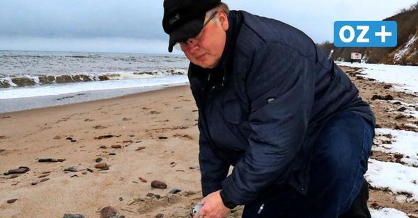 Bernstein und Fossilien am Ostsee-Strand finden: Reriker gibt Tipps für gute Stellen