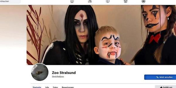 OZ-Kolumne aus Stralsund: Grufti-Band namens Streichelzoo
