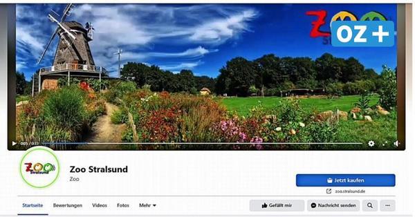 OZ-Kolumne aus Stralsund: Ich war auf der falschen Seite