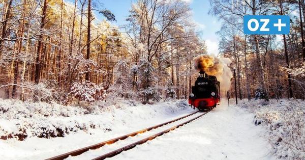 """Rügen: """"Rasender Roland"""" fährt mit Dampf durchs Winterwunderland"""