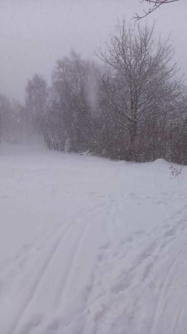Winter in der Rostocker Südstadt (Foto: Christian Teske)
