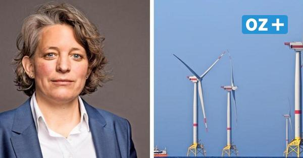 Ausbau der Offshore-Windenergie vor Rügen: Wird der Strom jetzt billiger, Frau Stempfle?