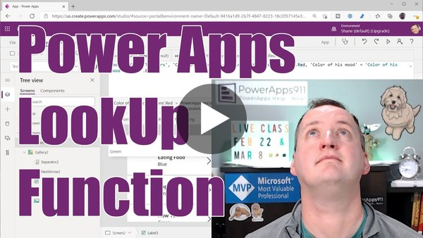 Power Apps (Canvas apps) LookUp Function