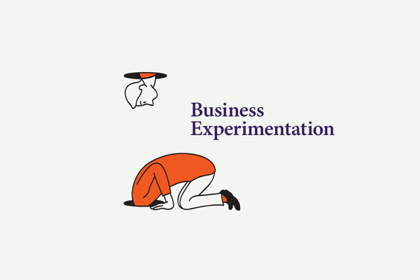 What is Business Experimentation?
