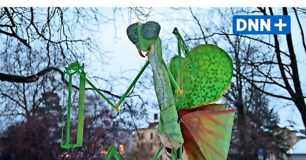 Nach Fisch Erwin 23 nun neue Installation am Albertplatz – Ein Interview mit dem Künstlerkollektiv